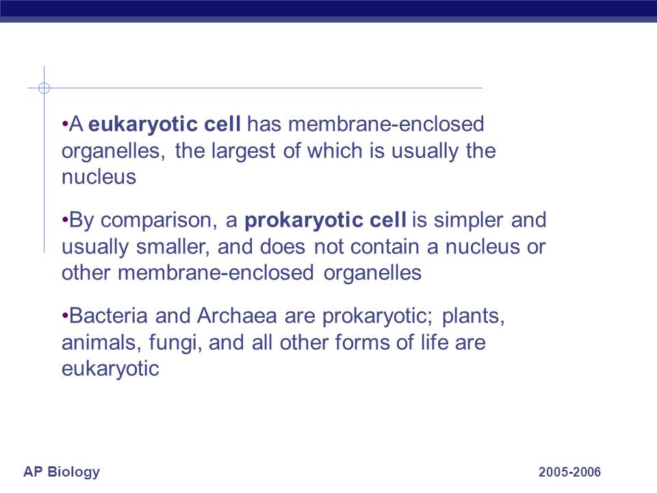 AP Biology 2005-2006 A eukaryotic cell has membrane-enclosed organelles, the largest of which is usually the nucleus By comparison, a prokaryotic cell