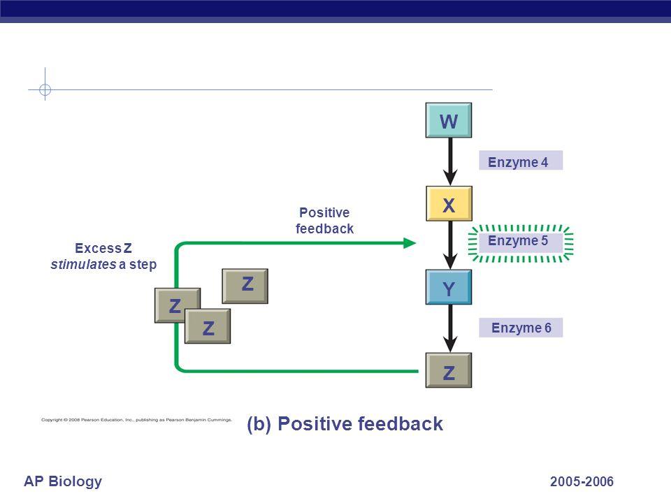 AP Biology 2005-2006 Enzyme 4 Enzyme 5 Enzyme 6 Z Z Z Z W X Y Positive feedback (b) Positive feedback Excess Z stimulates a step