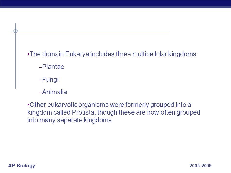 AP Biology 2005-2006 The domain Eukarya includes three multicellular kingdoms: – Plantae – Fungi – Animalia Other eukaryotic organisms were formerly g