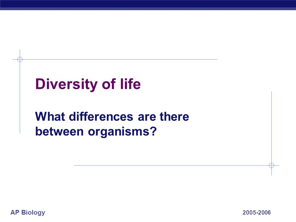 AP Biology 2005-2006 Diversity of life What differences are there between organisms?