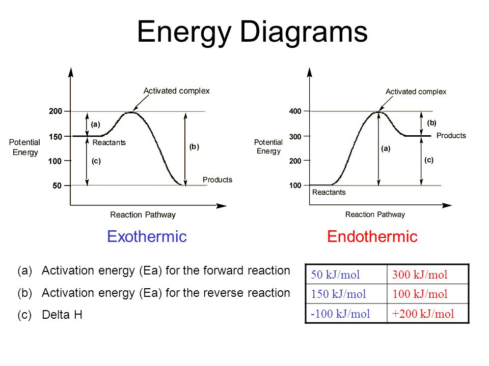 Energy Diagrams ExothermicEndothermic (a)Activation energy (Ea) for the forward reaction (b)Activation energy (Ea) for the reverse reaction (c) Delta