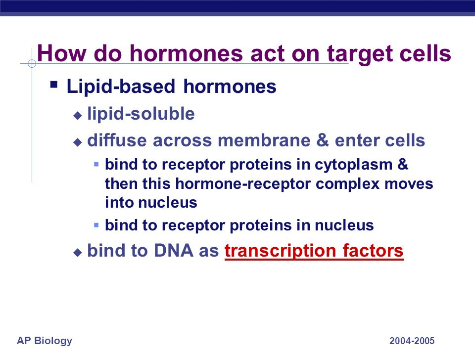 AP Biology 2004-2005 How do hormones act on target cells Lipid-based hormones lipid-soluble diffuse across membrane & enter cells bind to receptor pro