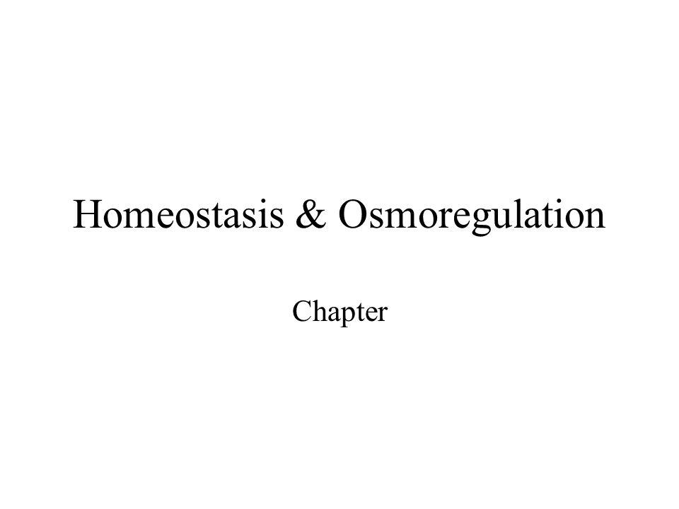 Homeostasis & Osmoregulation Chapter