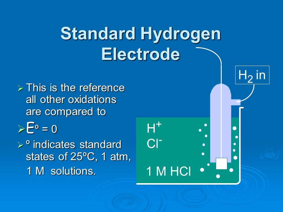 1 M HCl H + Cl - H 2 in Standard Hydrogen Electrode This is the reference all other oxidations are compared to This is the reference all other oxidati