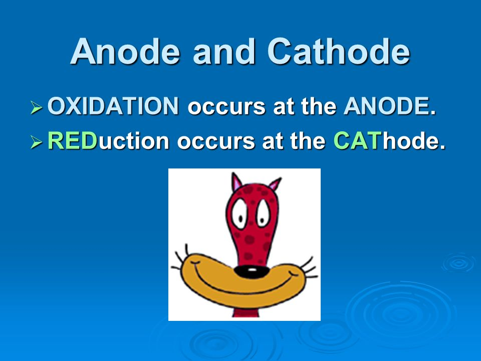 Anode and Cathode OXIDATION occurs at the ANODE. OXIDATION occurs at the ANODE. REDuction occurs at the CAThode. REDuction occurs at the CAThode.