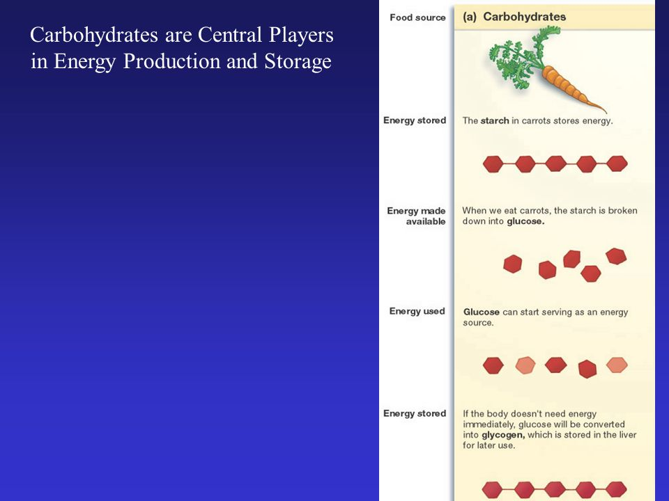 Carbohydrates are Central Players in Energy Production and Storage