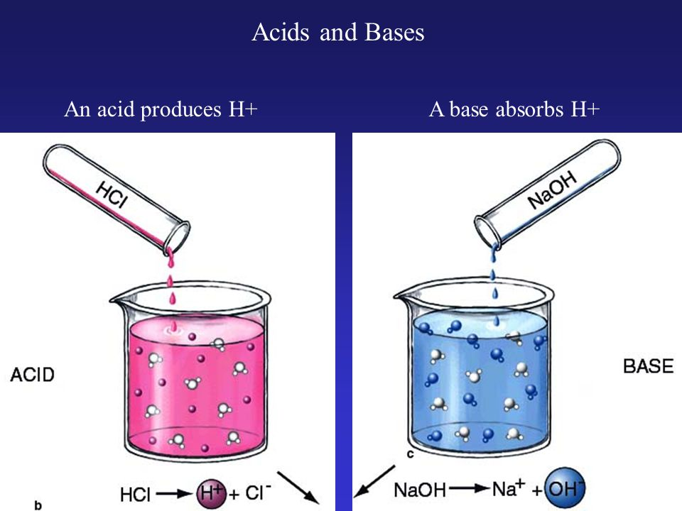 Acids and Bases An acid produces H+A base absorbs H+
