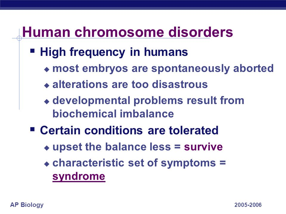 AP Biology 2005-2006 Human chromosome disorders High frequency in humans most embryos are spontaneously aborted alterations are too disastrous develop