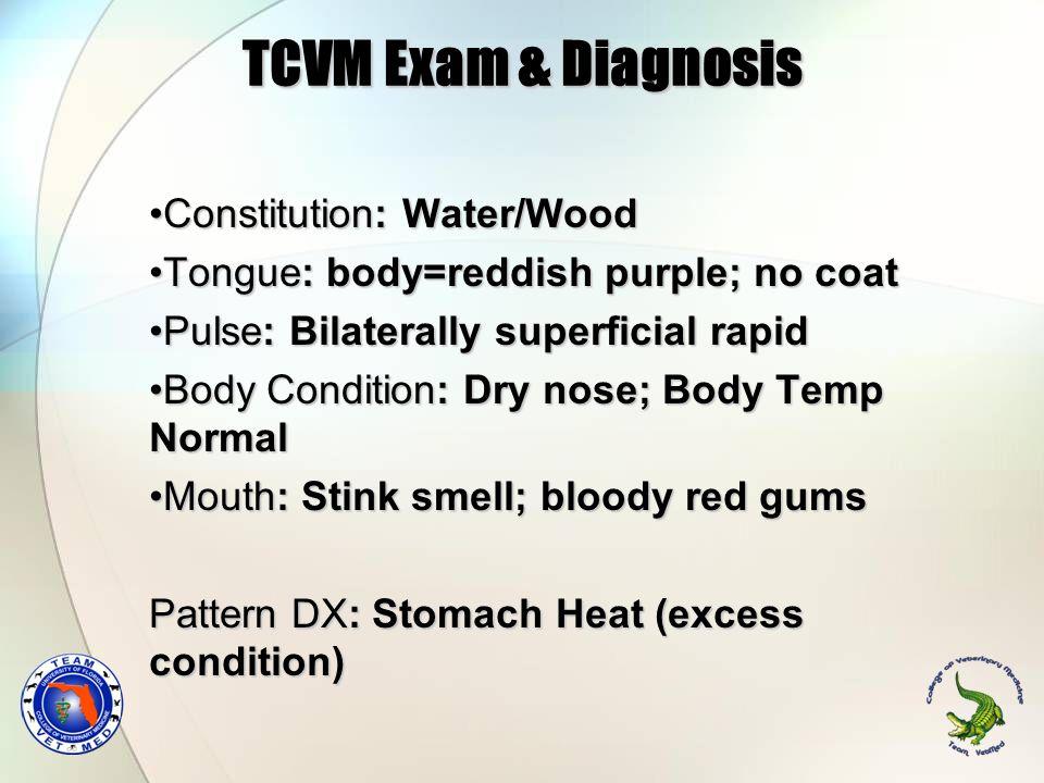 TCVM Exam & Diagnosis Constitution: Water/WoodConstitution: Water/Wood Tongue: body=reddish purple; no coatTongue: body=reddish purple; no coat Pulse: