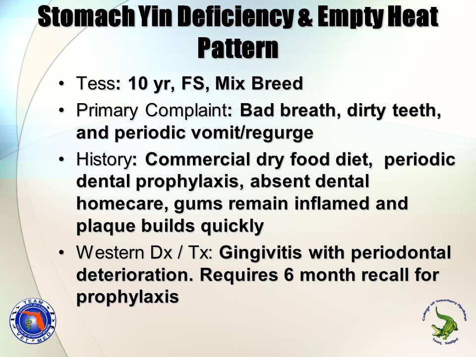 Stomach Yin Deficiency & Empty Heat Pattern Tess: 10 yr, FS, Mix BreedTess: 10 yr, FS, Mix Breed Primary Complaint: Bad breath, dirty teeth, and perio