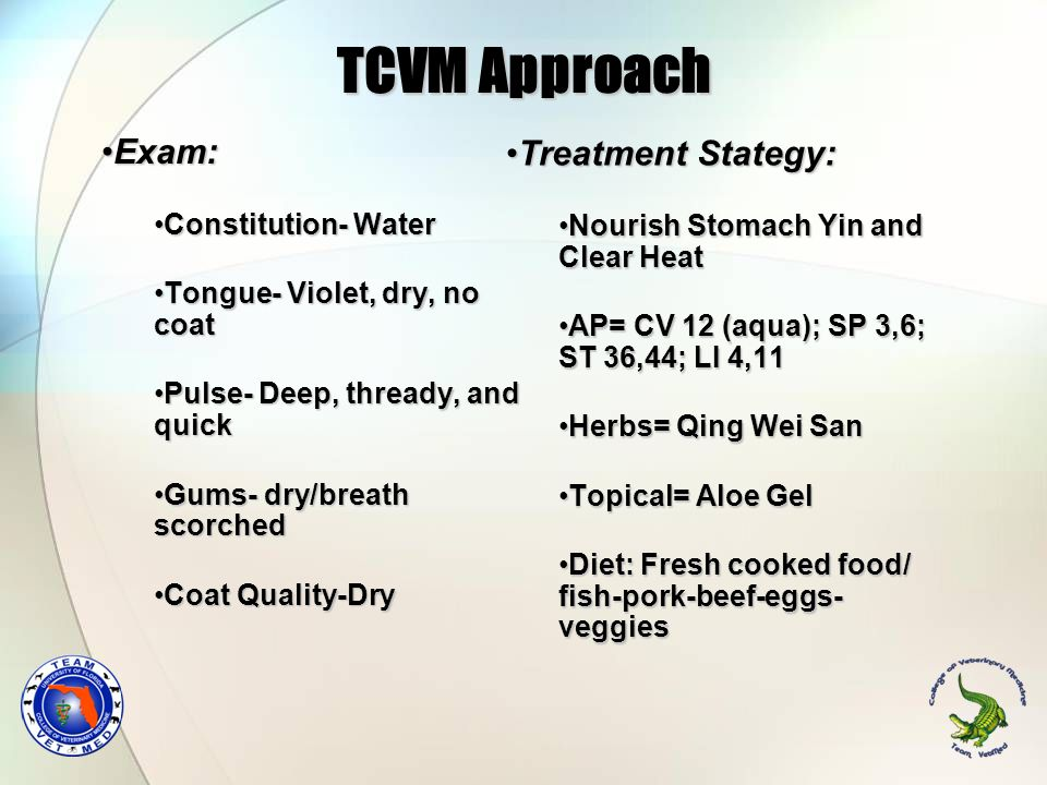 TCVM Approach Exam:Exam: Constitution- WaterConstitution- Water Tongue- Violet, dry, no coatTongue- Violet, dry, no coat Pulse- Deep, thready, and qui