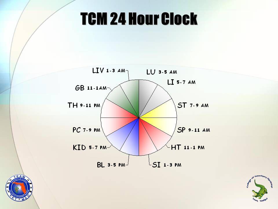 TCM 24 Hour Clock