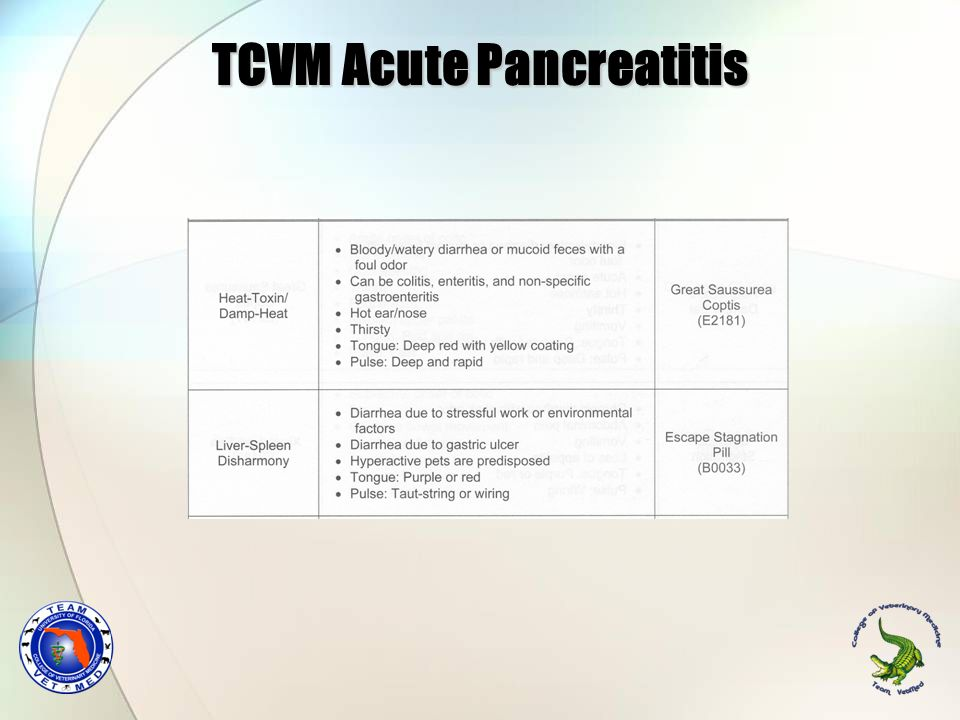 TCVM Acute Pancreatitis