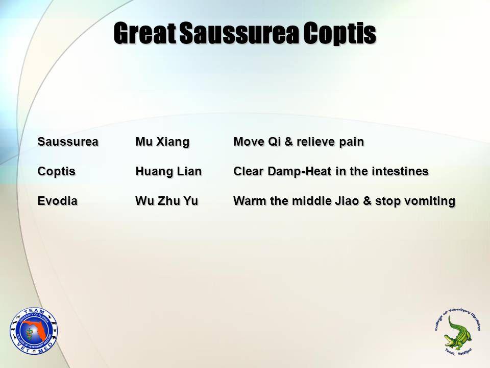 Great Saussurea Coptis Saussurea Mu Xiang Move Qi & relieve pain Coptis Huang Lian Clear Damp-Heat in the intestines Evodia Wu Zhu Yu Warm the middle