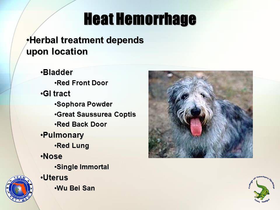 Heat Hemorrhage Herbal treatment depends upon locationHerbal treatment depends upon location BladderBladder Red Front DoorRed Front Door GI tractGI tr