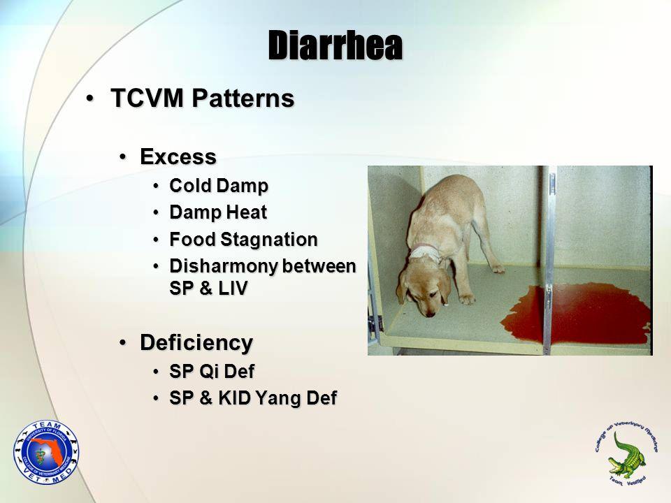 Diarrhea TCVM PatternsTCVM Patterns ExcessExcess Cold DampCold Damp Damp HeatDamp Heat Food StagnationFood Stagnation Disharmony between SP & LIVDisha