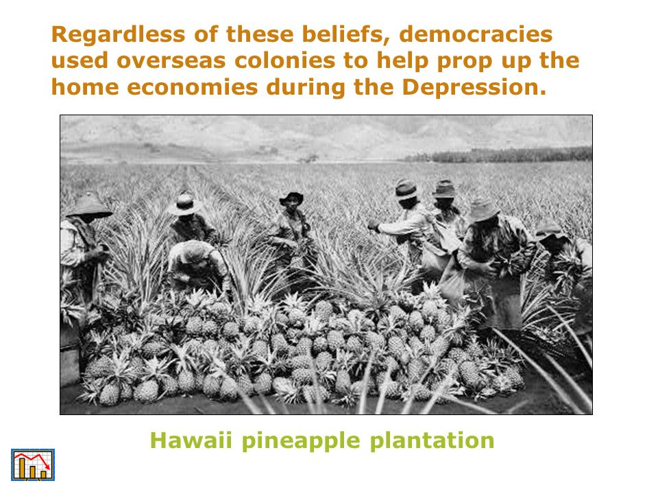 Regardless of these beliefs, democracies used overseas colonies to help prop up the home economies during the Depression. Hawaii pineapple plantation