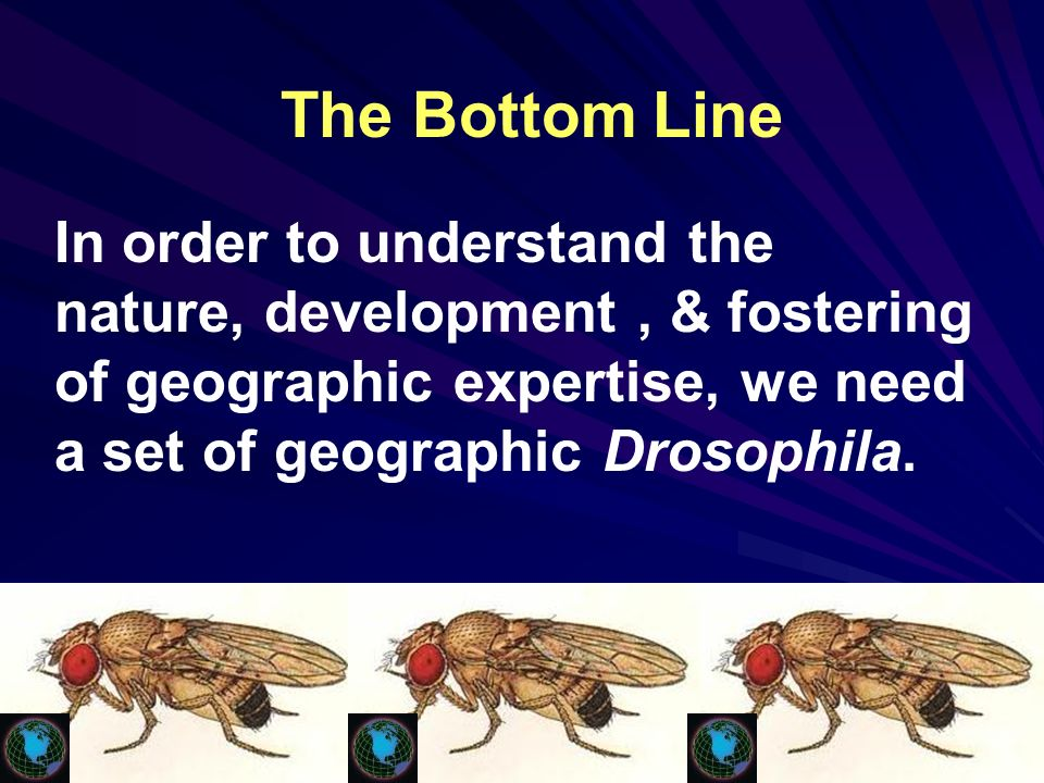 The Bottom Line In order to understand the nature, development, & fostering of geographic expertise, we need a set of geographic Drosophila.