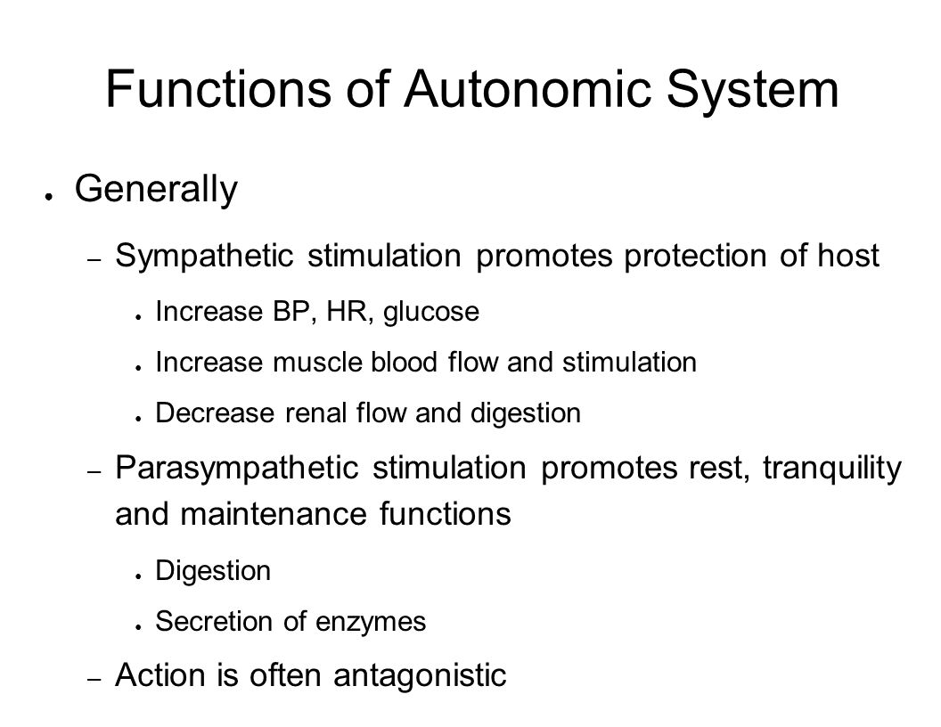 Functions of Autonomic System Generally – Sympathetic stimulation promotes protection of host Increase BP, HR, glucose Increase muscle blood flow and