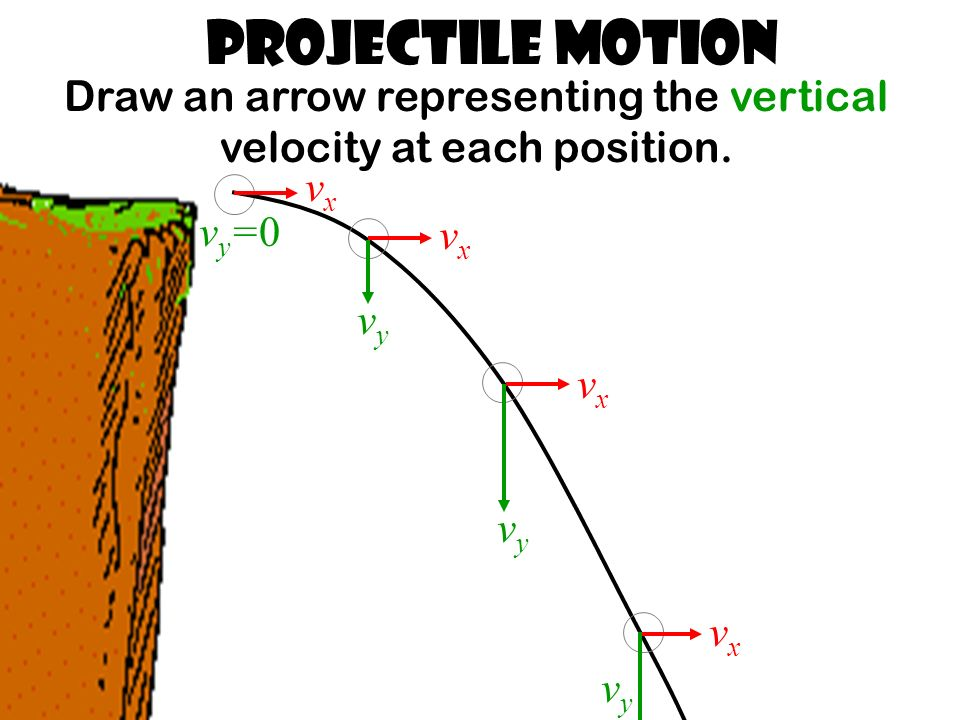 Projectile Motion Draw an arrow representing the vertical velocity at each position.
