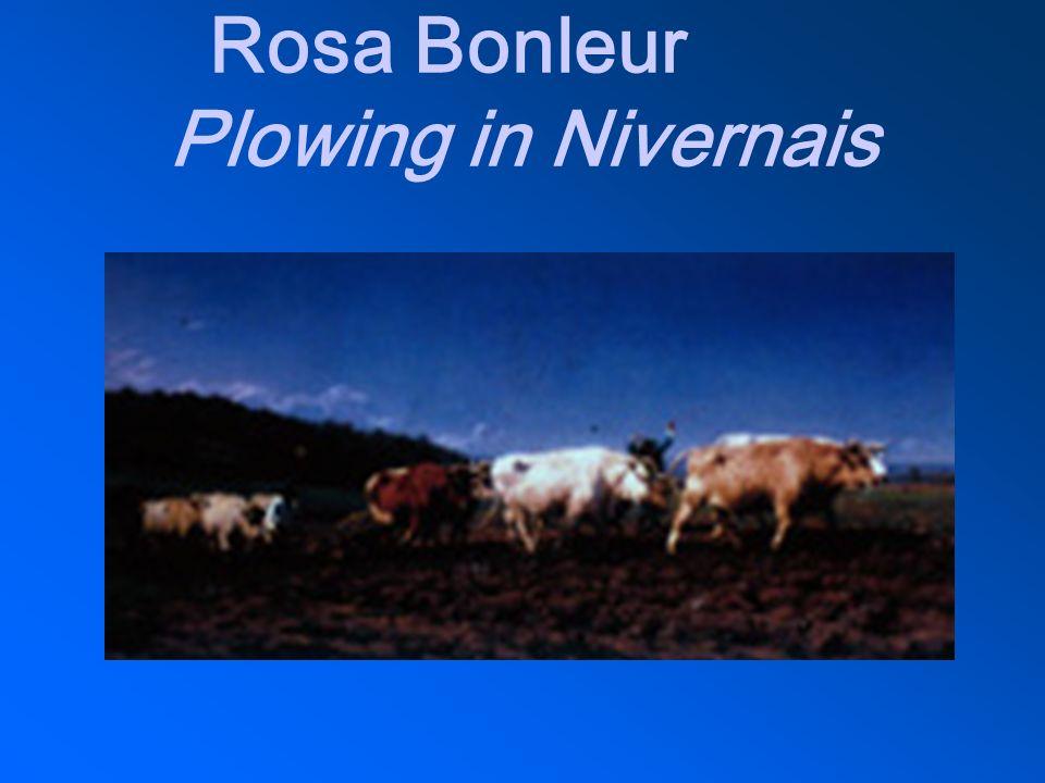 Rosa Bonleur Plowing in Nivernais