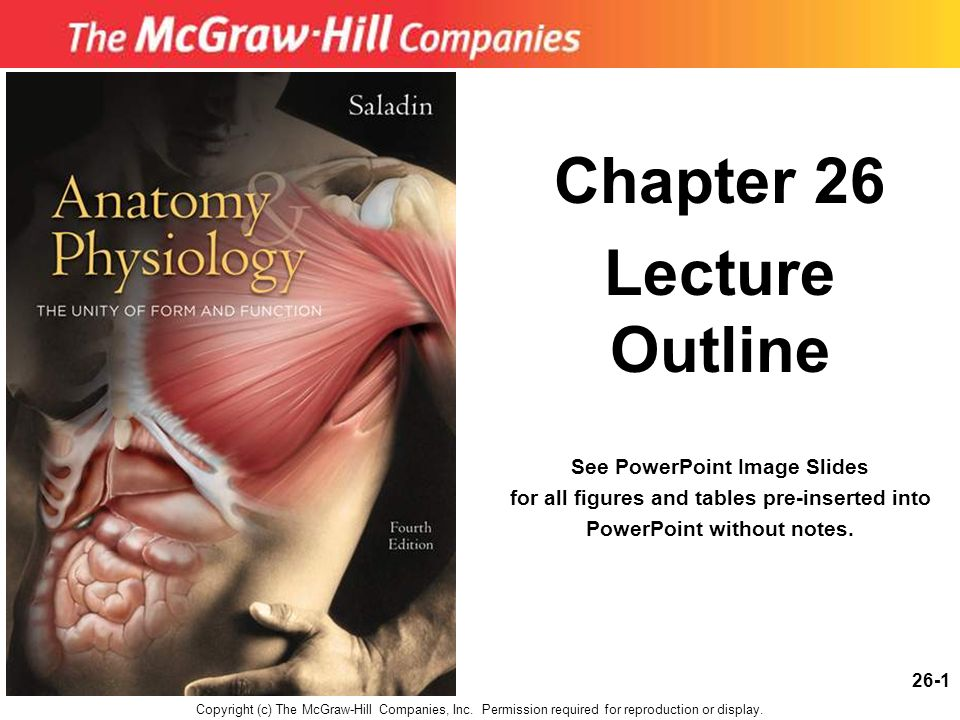 26-1 Chapter 26 Lecture Outline See PowerPoint Image Slides for all figures and tables pre-inserted into PowerPoint without notes. Copyright (c) The M