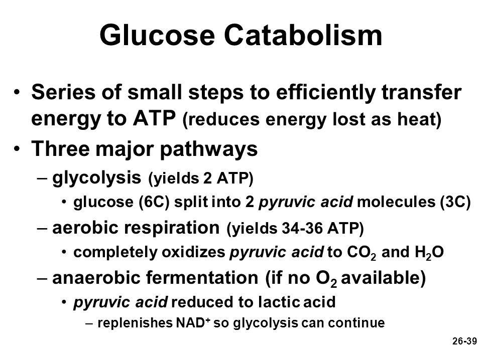 26-39 Glucose Catabolism Series of small steps to efficiently transfer energy to ATP (reduces energy lost as heat) Three major pathways –glycolysis (y