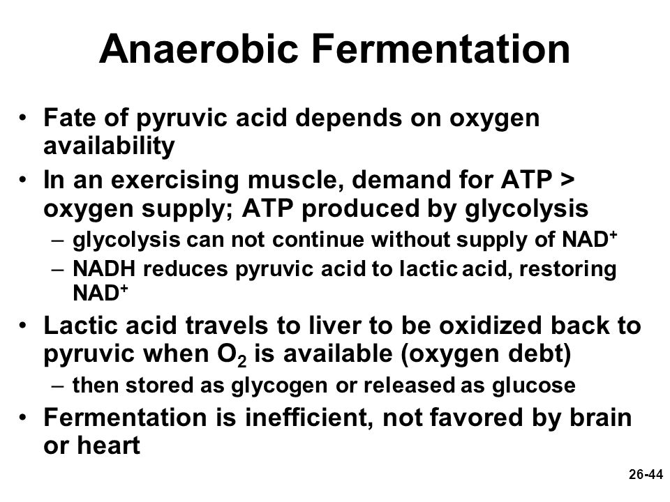 26-44 Anaerobic Fermentation Fate of pyruvic acid depends on oxygen availability In an exercising muscle, demand for ATP > oxygen supply; ATP produced
