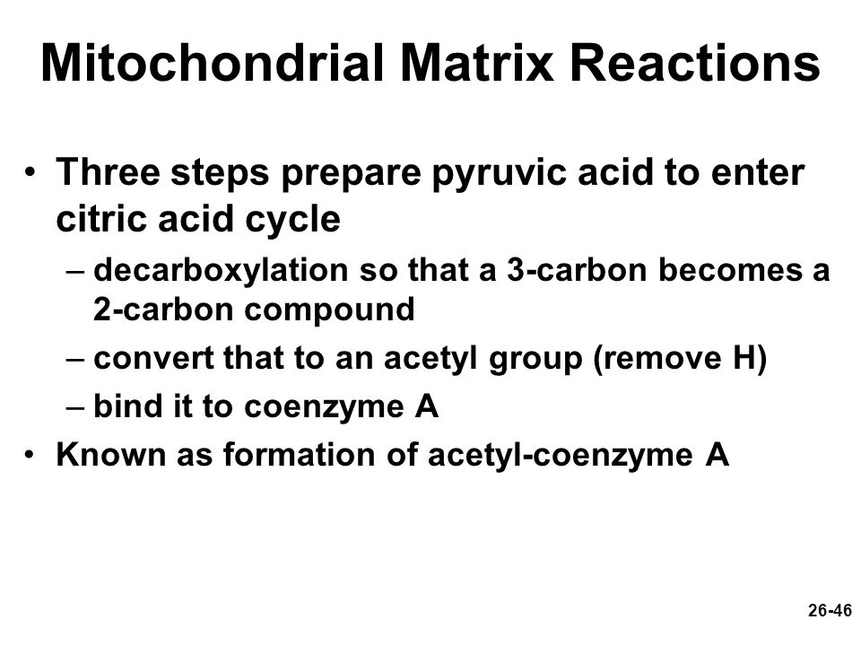 26-46 Mitochondrial Matrix Reactions Three steps prepare pyruvic acid to enter citric acid cycle –decarboxylation so that a 3-carbon becomes a 2-carbo