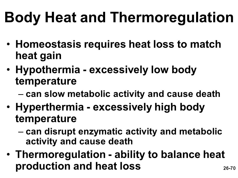 26-70 Body Heat and Thermoregulation Homeostasis requires heat loss to match heat gain Hypothermia - excessively low body temperature –can slow metabo