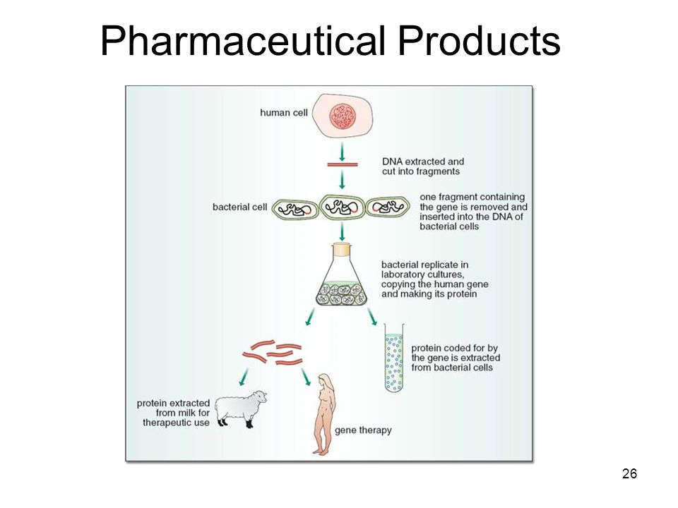 Pharmaceutical Products 26