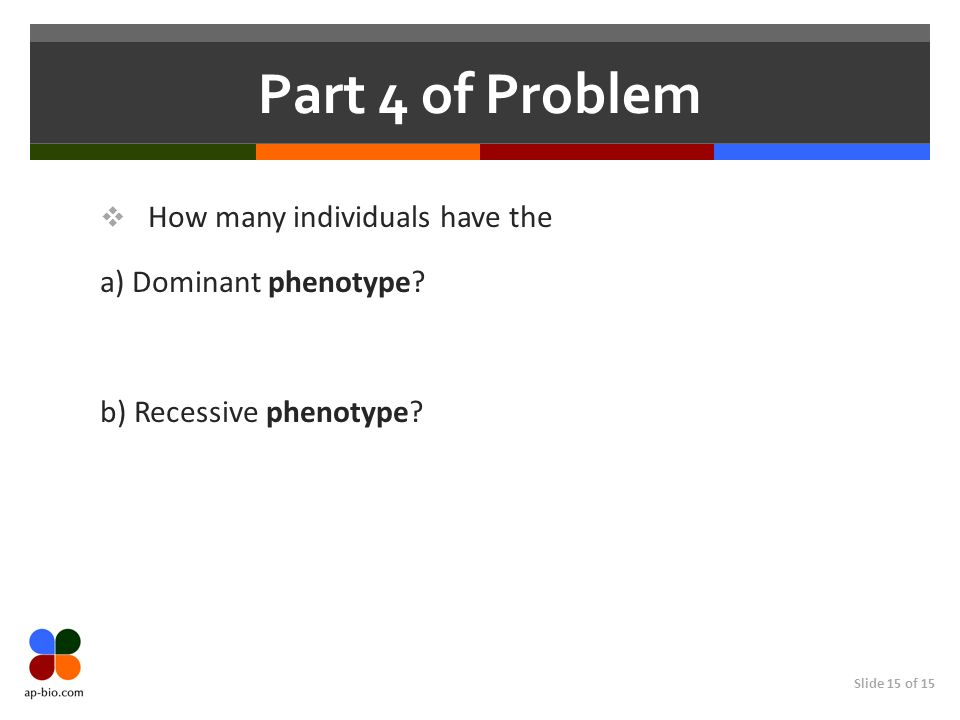 Slide 15 of 15 Part 4 of Problem How many individuals have the a) Dominant phenotype? b) Recessive phenotype?