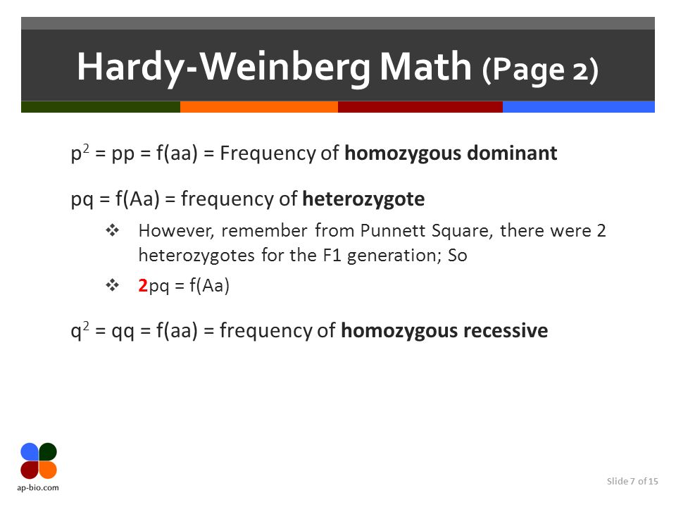 Slide 7 of 15 Hardy-Weinberg Math (Page 2) p 2 = pp = f(aa) = Frequency of homozygous dominant pq = f(Aa) = frequency of heterozygote However, remembe