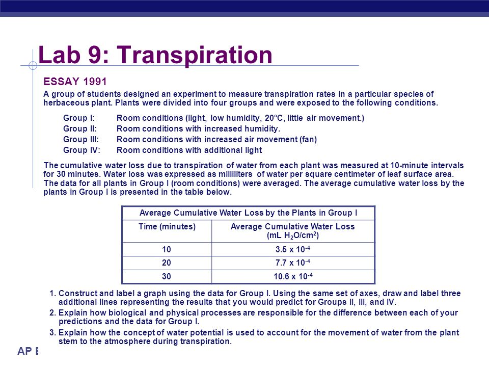 AP Biology Lab 9: Transpiration Conclusions transpiration wind light transpiration humidity