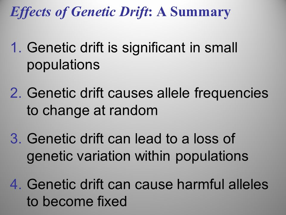 Effects of Genetic Drift: A Summary 1.Genetic drift is significant in small populations 2.Genetic drift causes allele frequencies to change at random