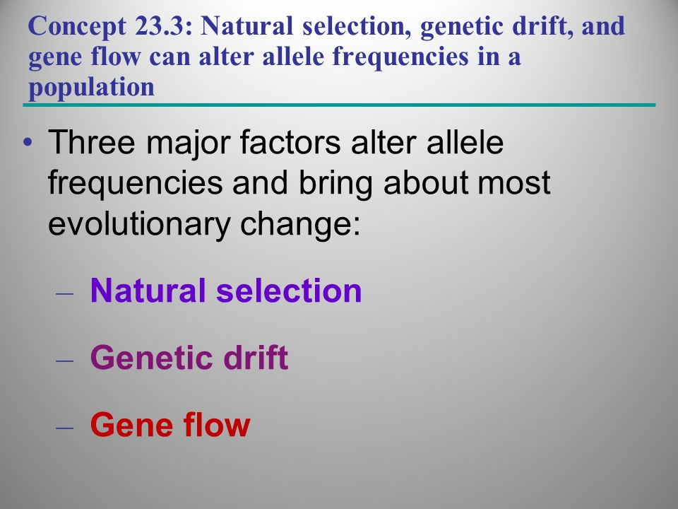Three major factors alter allele frequencies and bring about most evolutionary change: – Natural selection – Genetic drift – Gene flow Concept 23.3: N