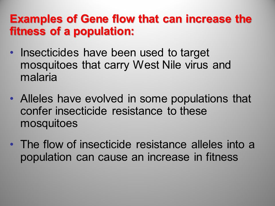 Examples of Gene flow that can increase the fitness of a population: Insecticides have been used to target mosquitoes that carry West Nile virus and m
