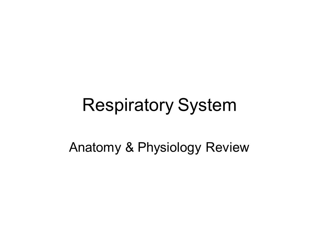 Definititions Respiration: movement of oxygen from atmosphere into cells and return of carbon dioxide to atmosphere – Ventilation: movement of air in and out of the lungs – External respiration: diffusion of oxygen and carbon dioxide between air and blood in the alveoli – Internal respiration: Use of glucose energy to form ATP, with or without oxygen