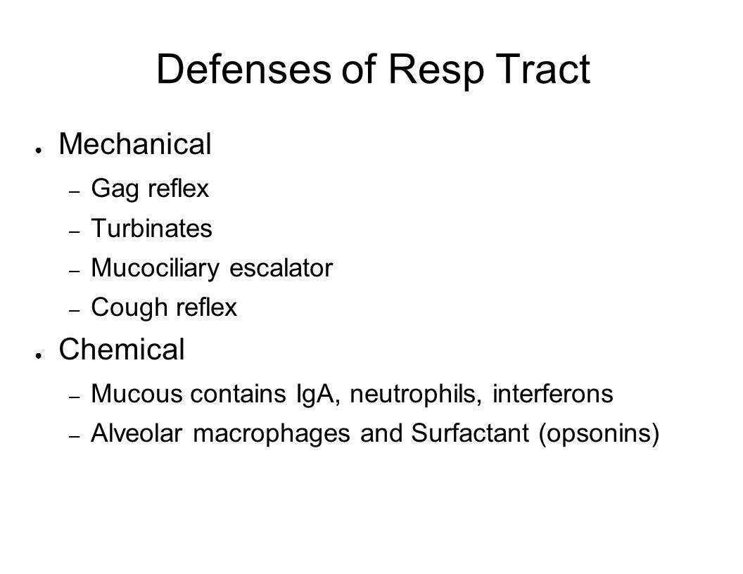 Defenses of Resp Tract Mechanical – Gag reflex – Turbinates – Mucociliary escalator – Cough reflex Chemical – Mucous contains IgA, neutrophils, interf