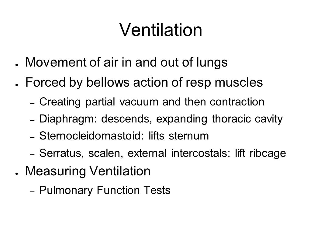 Ventilation Movement of air in and out of lungs Forced by bellows action of resp muscles – Creating partial vacuum and then contraction – Diaphragm: d