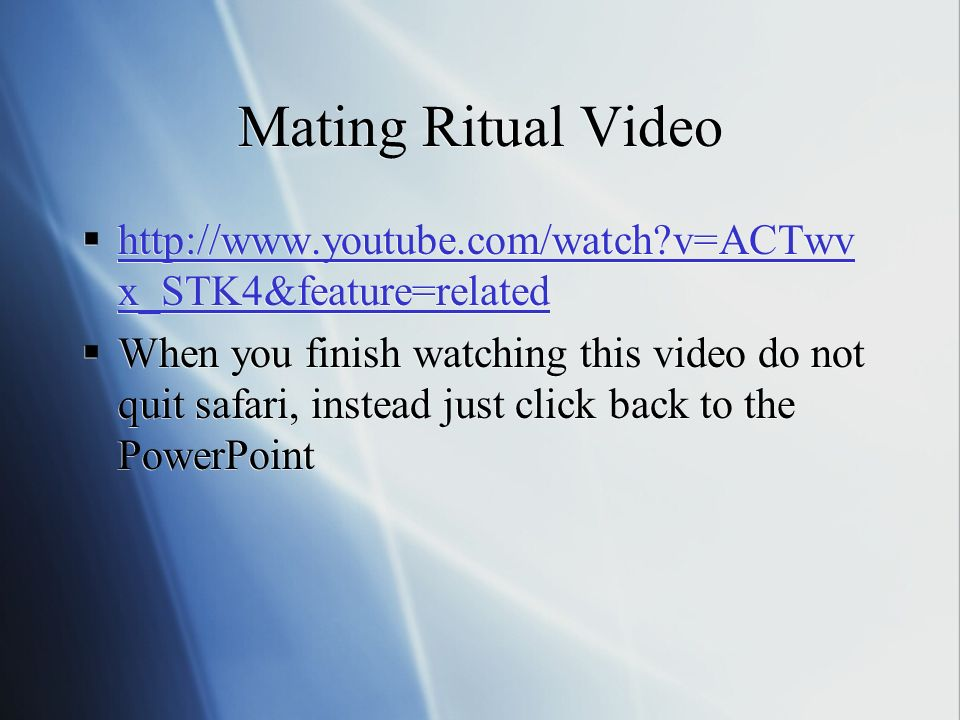 Mating Ritual Video http://www.youtube.com/watch v=ACTwv x_STK4&feature=related http://www.youtube.com/watch v=ACTwv x_STK4&feature=related When you finish watching this video do not quit safari, instead just click back to the PowerPoint http://www.youtube.com/watch v=ACTwv x_STK4&feature=related http://www.youtube.com/watch v=ACTwv x_STK4&feature=related When you finish watching this video do not quit safari, instead just click back to the PowerPoint