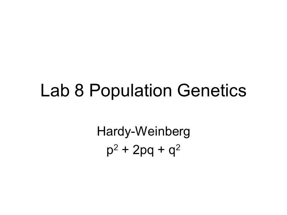 Lab 8 Population Genetics Hardy-Weinberg p 2 + 2pq + q 2