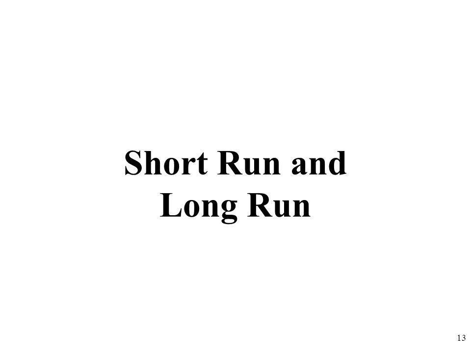 Short Run and Long Run 13