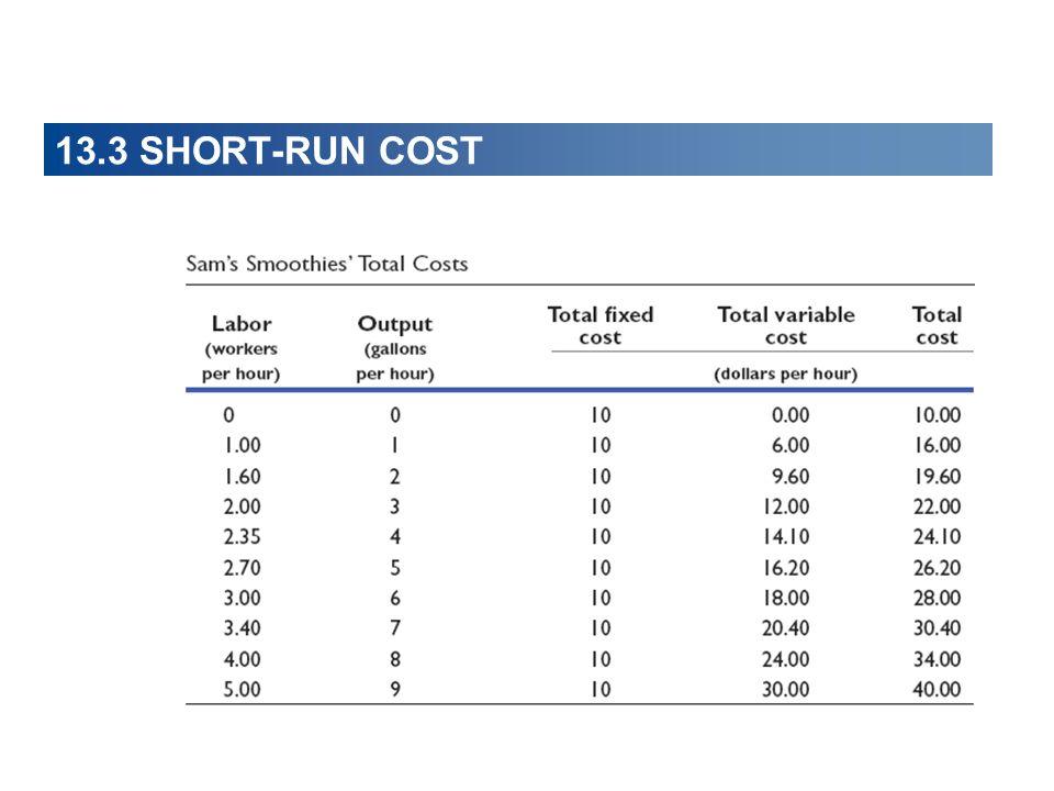 13.3 SHORT-RUN COST