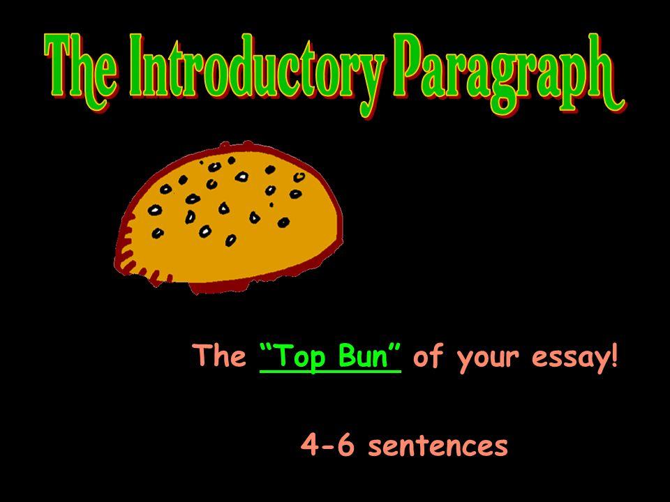The Top Bun of your essay! 4-6 sentences