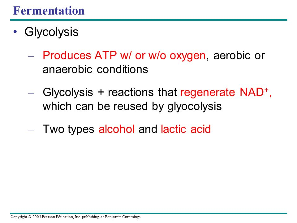 Fermentation Glycolysis – Produces ATP w/ or w/o oxygen, aerobic or anaerobic conditions – Glycolysis + reactions that regenerate NAD +, which can be