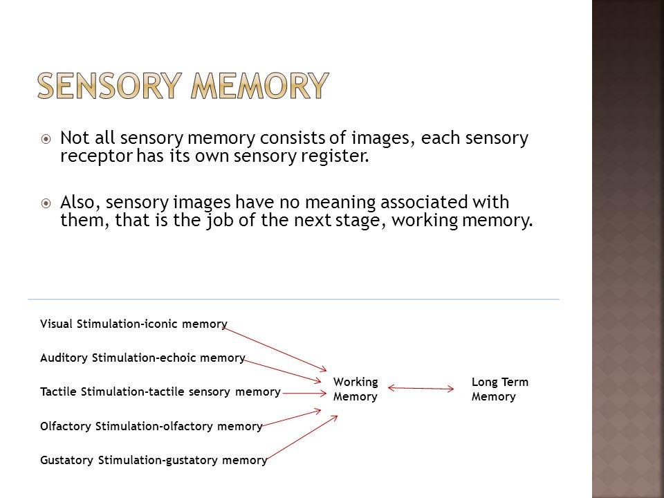 Visual Stimulation-iconic memory Auditory Stimulation-echoic memory Tactile Stimulation-tactile sensory memory Olfactory Stimulation-olfactory memory