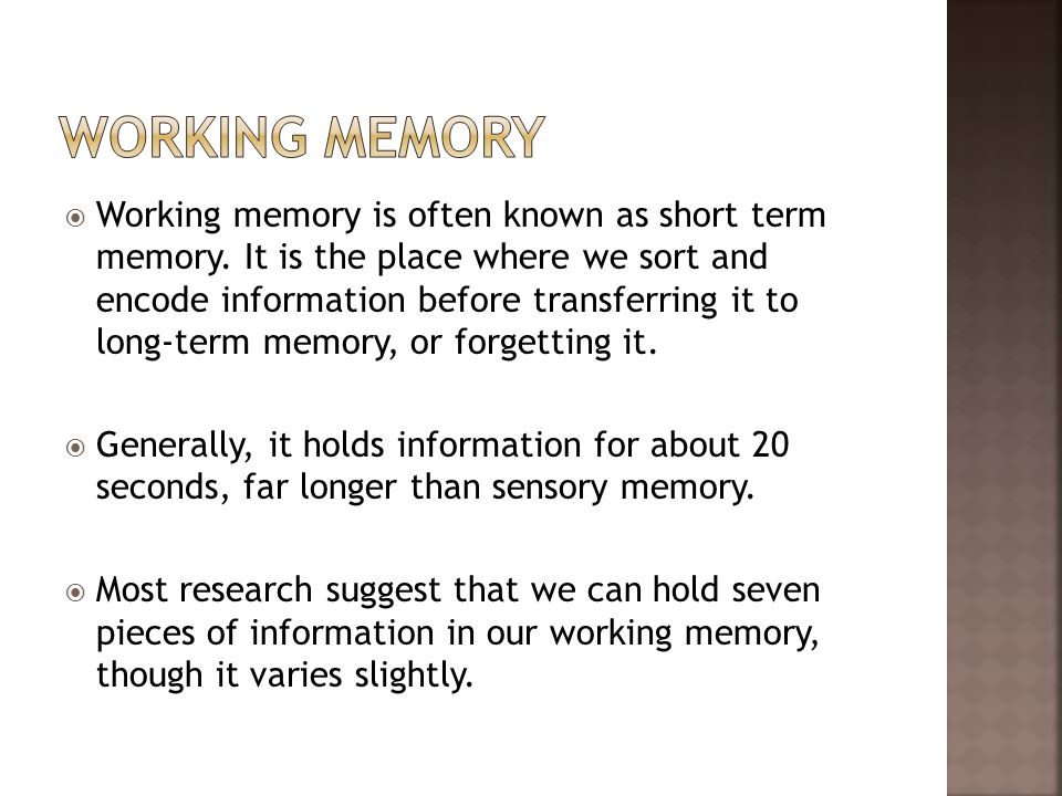 Working memory is often known as short term memory. It is the place where we sort and encode information before transferring it to long-term memory, o