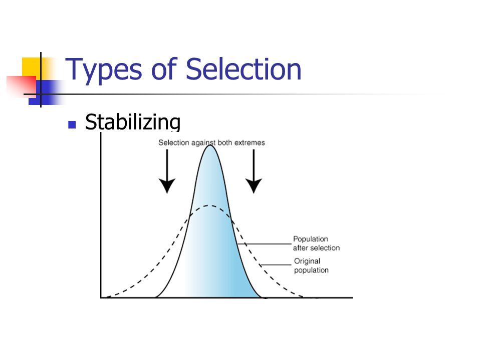 Types of Selection Stabilizing