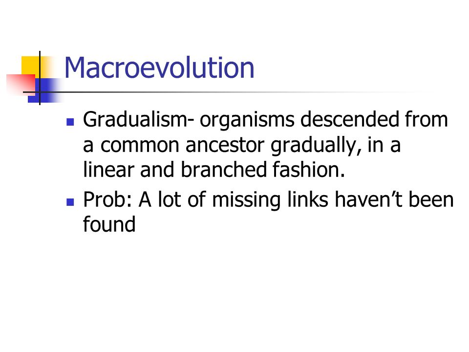 Macroevolution Gradualism- organisms descended from a common ancestor gradually, in a linear and branched fashion. Prob: A lot of missing links havent